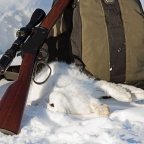 Hunting March Hares